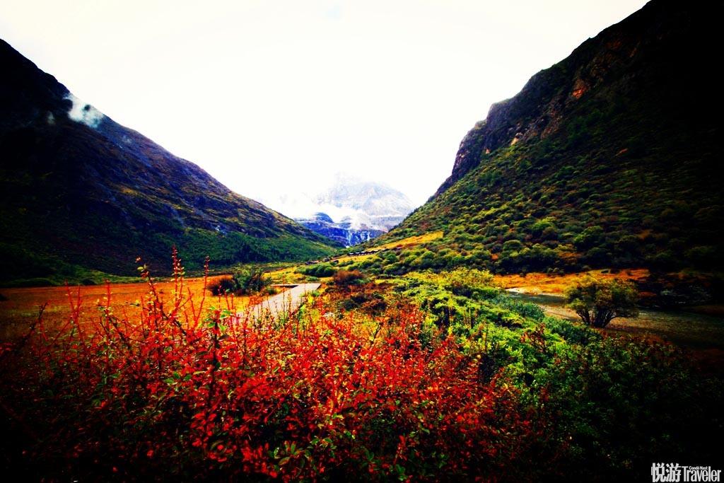 """奥地利探险家约瑟夫-洛克曾说过这样一句话:""""在整个世界里,还有什么地方有这样的景色,等待着摄影家和..."""