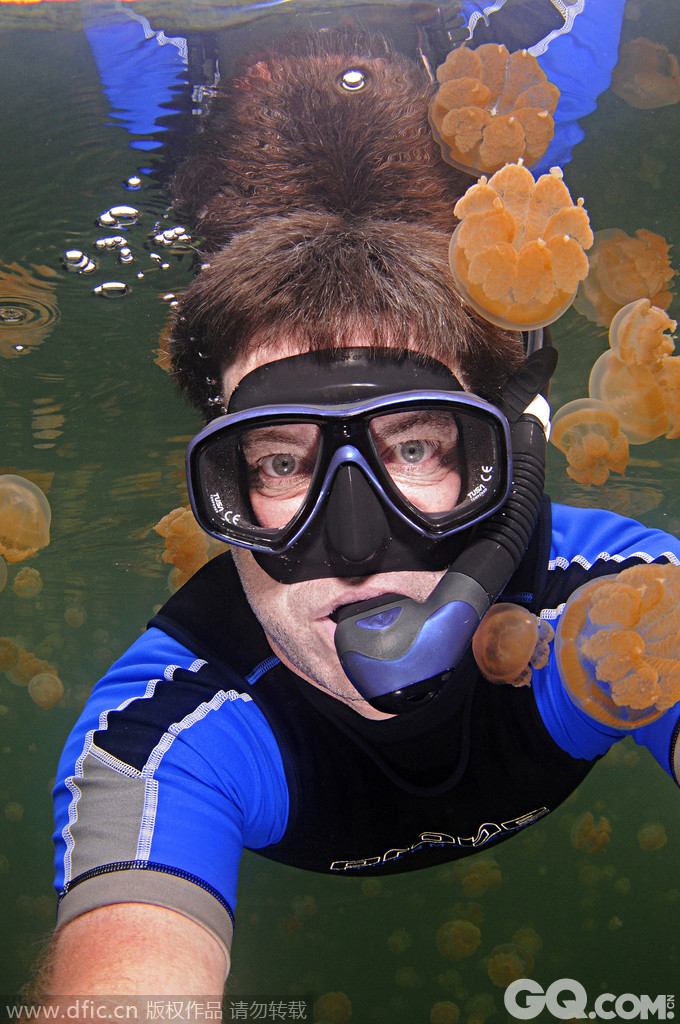 【图】海底动物搞笑自拍合影暴红网络