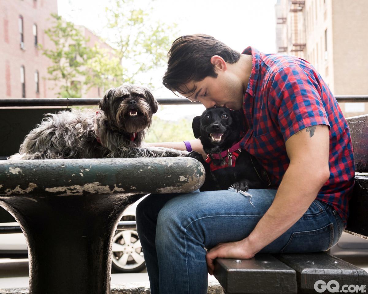 美国纽约为了鼓励更多的人去收养动物,