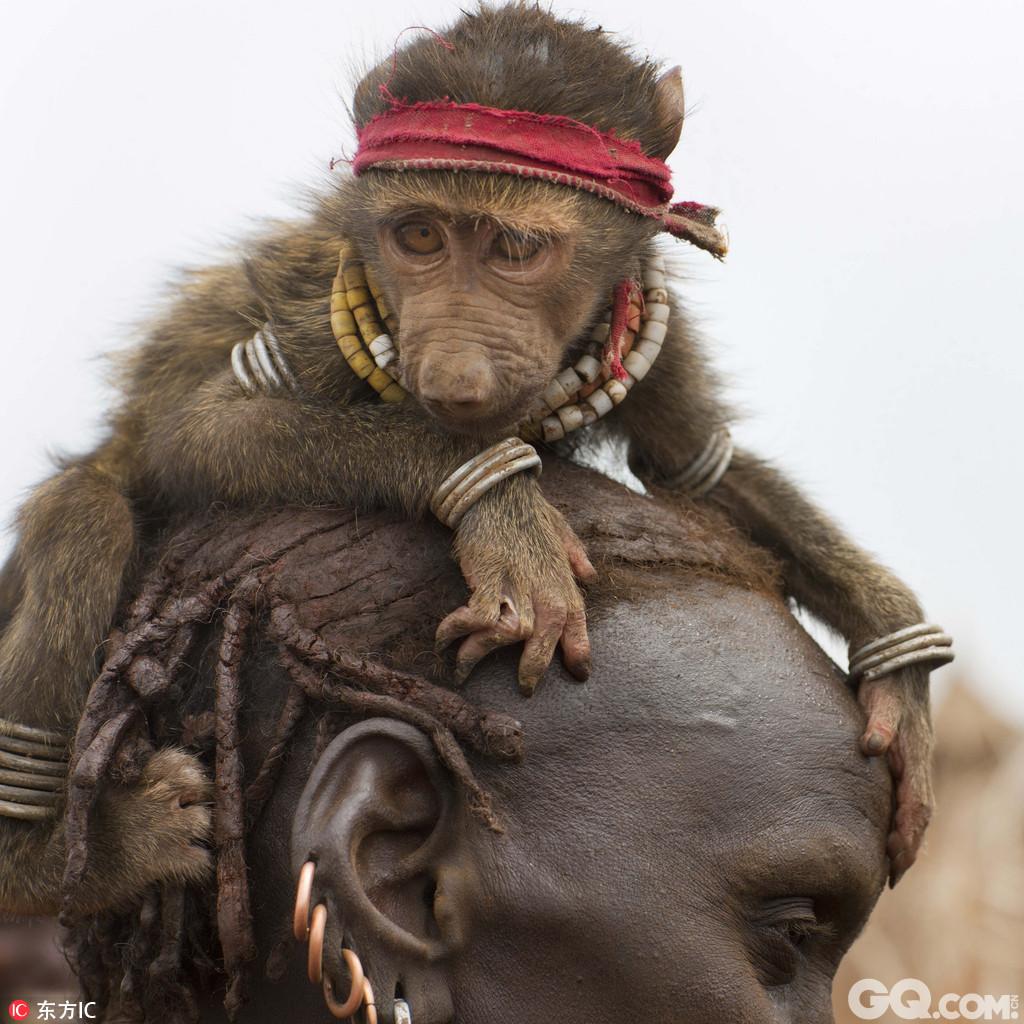 热爱养宠的铲屎官究竟有多疯狂?法国摄影师Eric Lafforgue用一组图片告诉你。Eric用了10年时间全球旅行,足迹遍布埃塞俄比亚、贝宁、沙阿特阿拉伯、吉尔吉斯斯坦、朝鲜、巴拿马和缅甸等多个国家,记录了全球各地人们养过的那些奇葩宠物,从鬣狗到公鸡、从蟒蛇到毛驴、从骆驼到蜥蜴,除了猫猫狗狗另类宠物无奇不有。