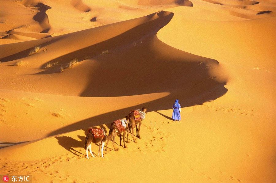 这里是非洲的后花园,那片撒哈拉沙漠,三毛荷西的唯美爱情就值得我们前往。这里有电影里的卡萨布兰卡,当悠扬的音乐响起,那浪漫的爱情故事犹在眼前,这里有世界最著名的三大蓝白小镇舍夫沙万,神秘又忧郁,街道上到处都是猫咪。现在,摩洛哥单方面给中国免签待遇,带着护照和订号座位的联程客票入境,免签停留90天。
