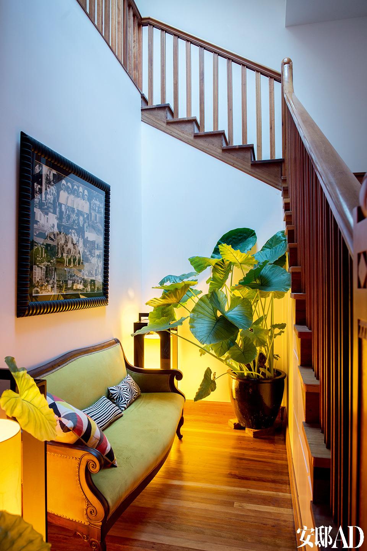 一层进门是个小厅,沙发、植物与灯光营造出温柔一角。