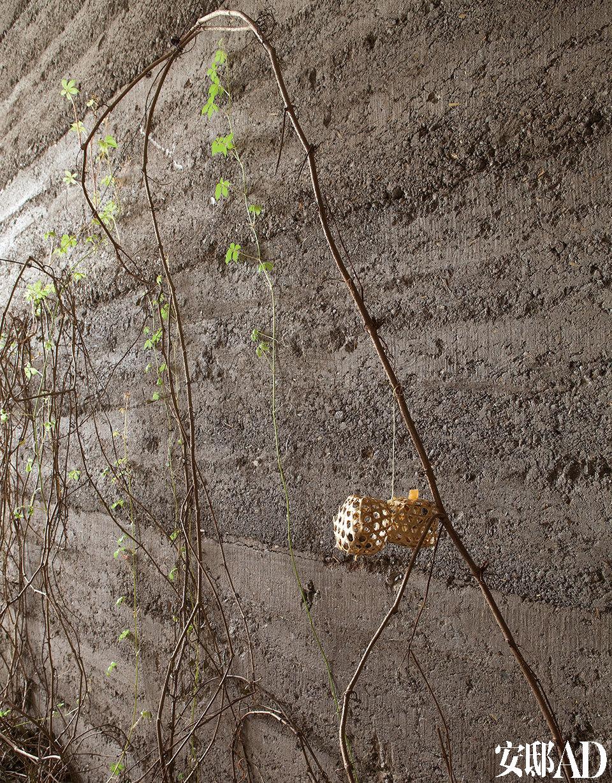 坑坑洼洼的墙面仿佛经历了时间的捶打,一簇爬山虎正蓬勃生长。为了还原乡野气息,无用生活空间用古法打造了夯土内墙,几棵爬墙的绿植更让它生机四溢。