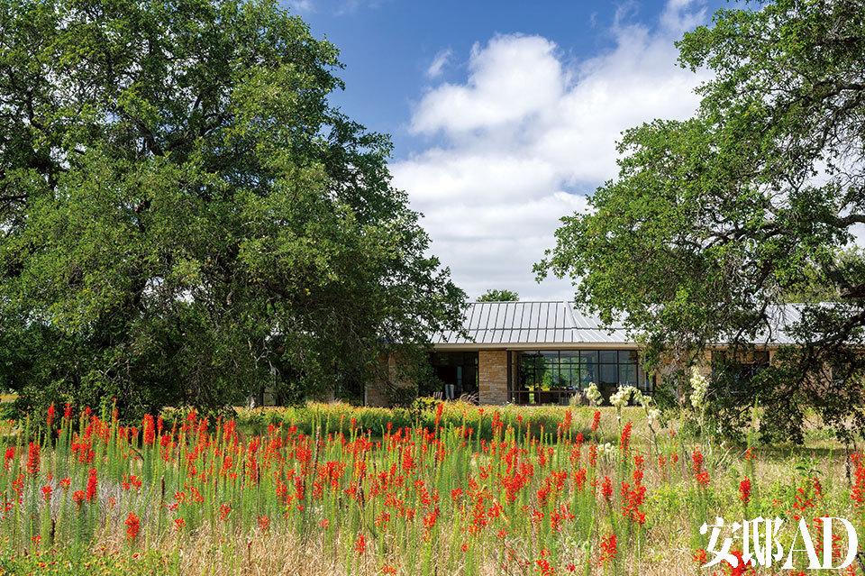 """位于得克萨斯州的克劳福德农场,在前总统小布什任期内,一直都被美国人称为""""西部白宫""""。 这座拥有大片牧场的庄园,不仅是小布什一家放松休憩的场所,还是他""""休闲外交""""的实施地。而在小布什卸任后,这里更成为前总统夫妇实现自己""""简单生活""""梦想的永久居所。幢颇富得克萨斯当地色彩的建筑掩映在红花草地与当地的柏树之中。"""