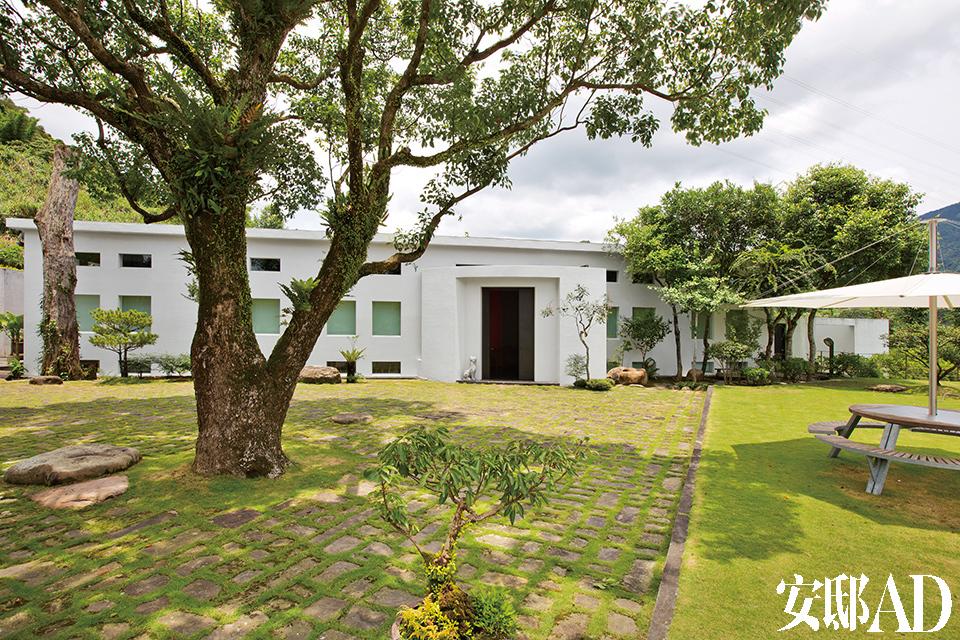 门前大草坪上的大牛樟树,到四周的松树盆栽与紫藤,都是林宪能一手栽种。其户外家具来自于比利时品牌Extremis。