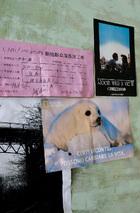 墙上贴着杂志书页、伊丽莎最爱的电影《看得见风景的房间》和一次在中国拍戏时留下的收据。
