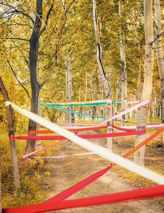 风与布的爱恋 Enchanted Forest