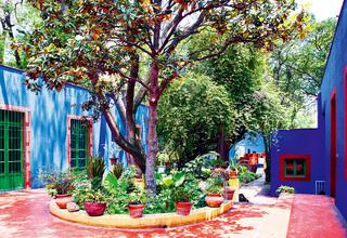墨西哥·花园里的弗里达 GARDEN OF DELIHTS