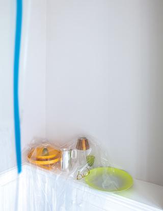 塑料宣言 Plastic Fantastic