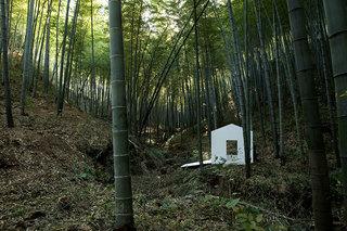 竹野仙踪 Bamboo Spirit