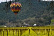美国加利福尼亚纳帕谷纳帕谷是一个丘陵地带,似平原又颇有起伏,似山地又不见峰巅,可以乘坐热气球一探究...