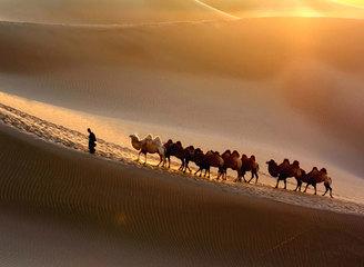 先定一个小目标,比如来次2786km的南疆行