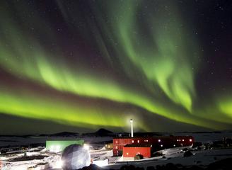 南极年度摄影展:揭秘你所不知道的野性南极