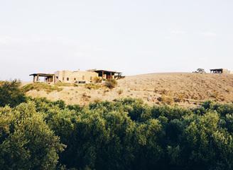 马拉喀什的风很热,带着橄榄树的清香