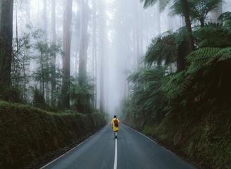 没有袋鼠不拍考拉 澳大利亚的冒险风光依然美到窒息