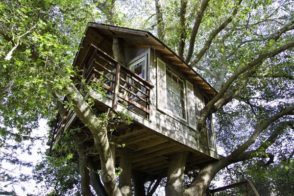 森林树屋设计图