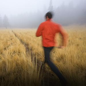 雾霾天就别出门运动了