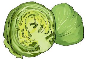 用这十种常见的蔬菜做沙拉