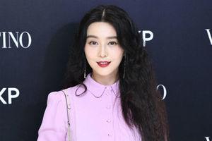许魏洲现身Valentino品牌活动 范冰冰粉紫色连衣裙优雅高贵