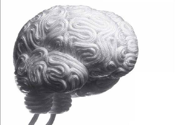 健康 | 大脑的胜利