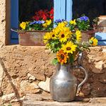 春暖花开!用鲜花与窗台浪漫邂逅