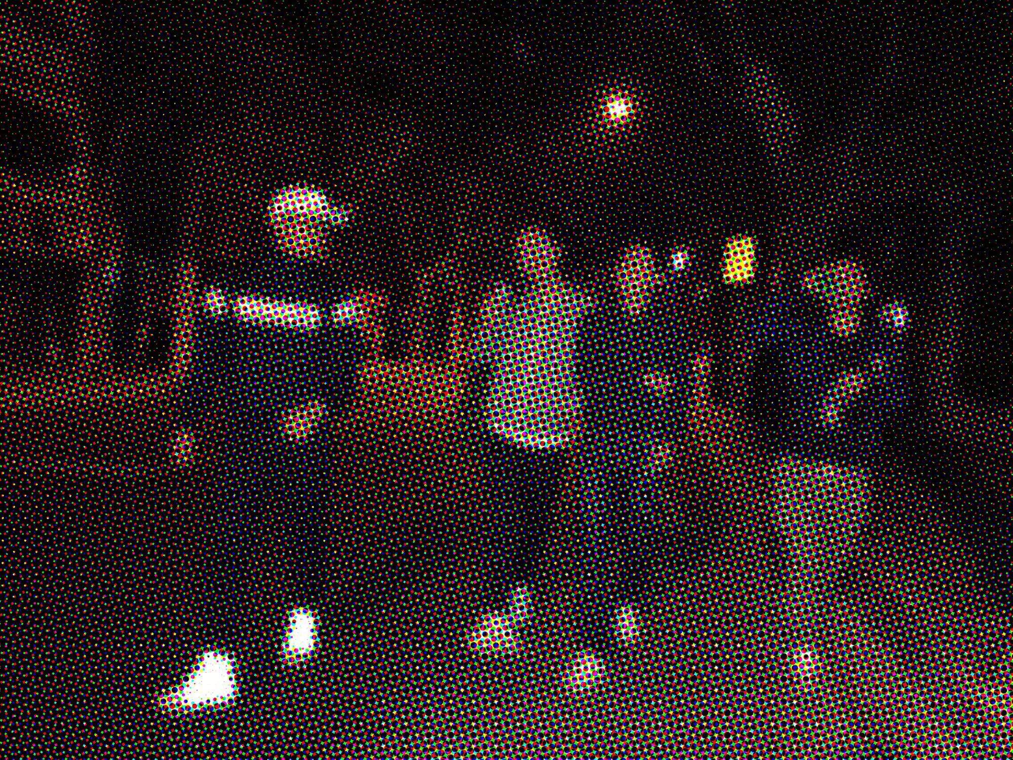 我们(几个中年人)闯进了一场cool kids的聚会