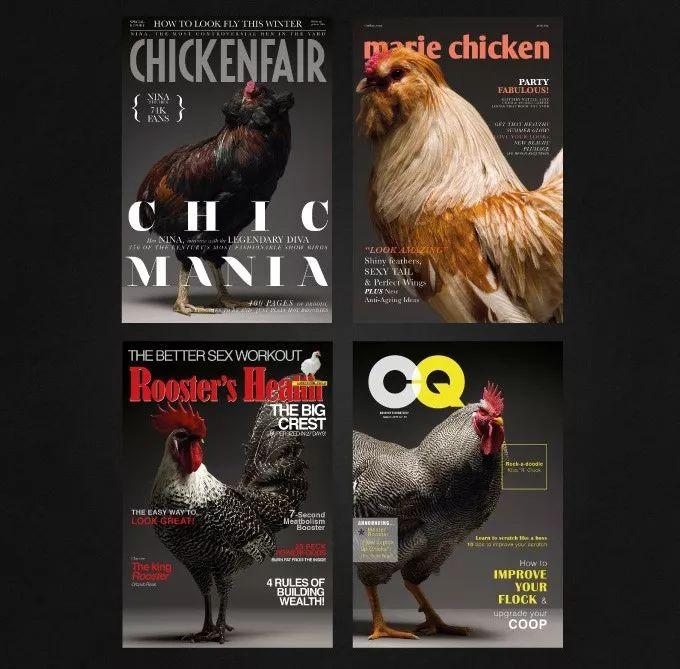 GQ是《绅士季刊》,那这本CQ是《绅士鸡刊》吗?   GQ Daily
