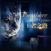 王者之路-卡地亚全新猎豹系列高级珠宝-销售专题