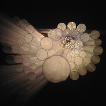 2015雪花文化展 《很久很久以前:紫薇花的传说》