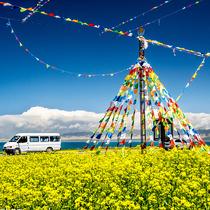 七月一路向西去青海 在最美的时候遇见你