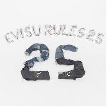 EVISU 品牌25周年EVISU RULES特藏版套装火热上市