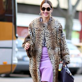 裙装和大衣的完美比例