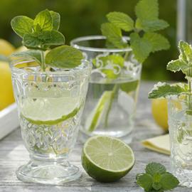 柠檬水真的能减肥吗?
