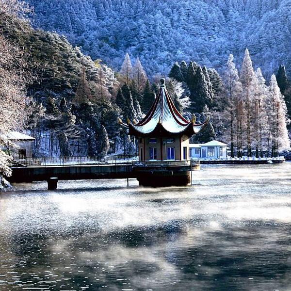冬季在南方更能肆意玩雪撒欢